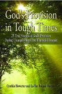 God's Provision Book Cover