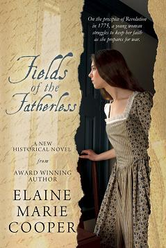 Field of The Fatherless book cover