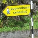 Leprchaun Crossing